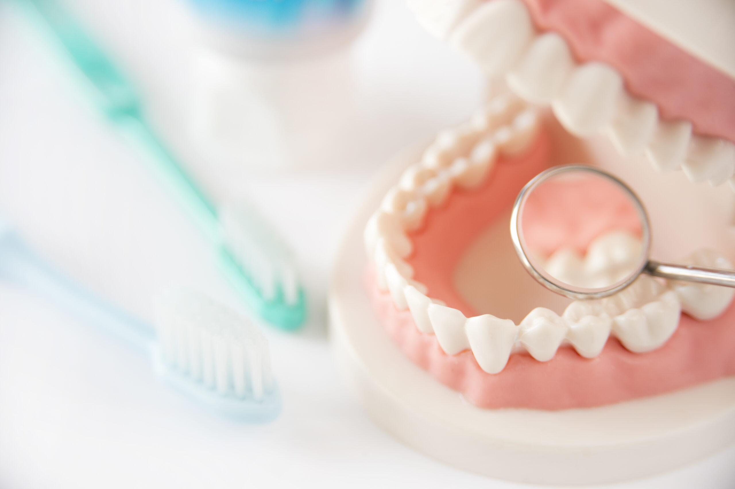 予防を中心とした歯科診療